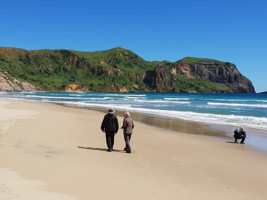 Waihere Bay - Calder and Lawson Tours