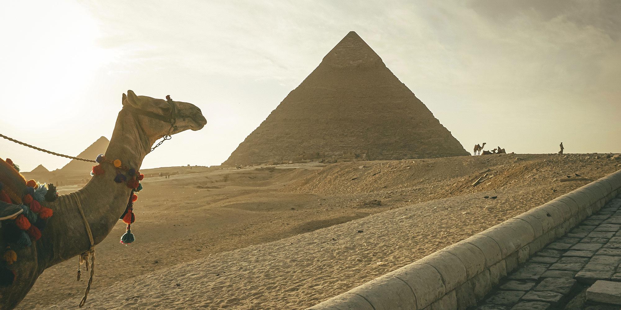 Calder and Lawson Tours - Egypt