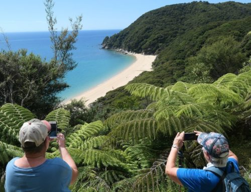 News from the road – Pelorus Sound & Golden Bay – January 2021